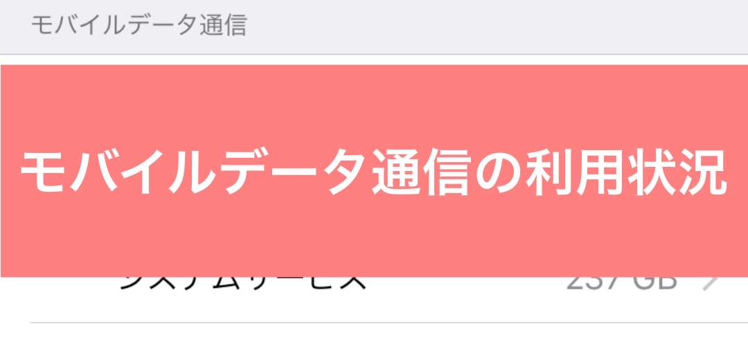 【iPhone】モバイルデータ通信の利用状況を確認